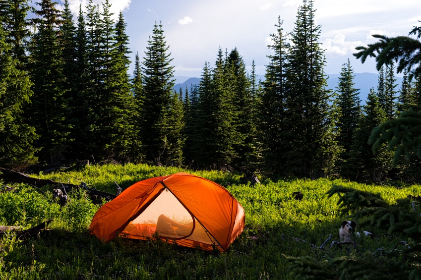 Backpacking in Mountains Summer - Scenic view in mountain meadow with tent and incredible mountain views.  Colorado, USA.